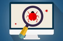 Bug Bounty Program