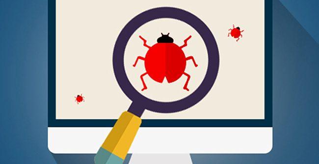 Bug Bounty Program